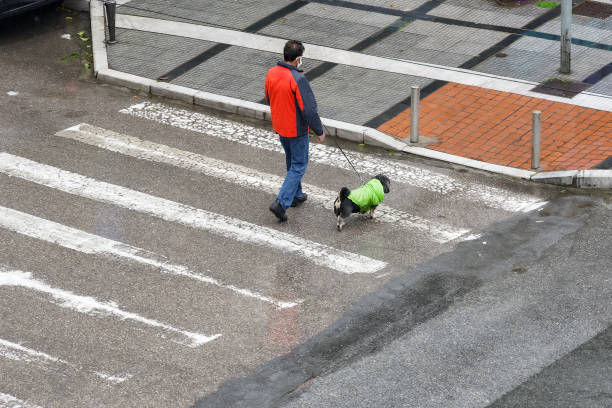 Male wearing face mask holds a canine on leash at an empty city street, due to coronavirus traffic restrictions. stock photo