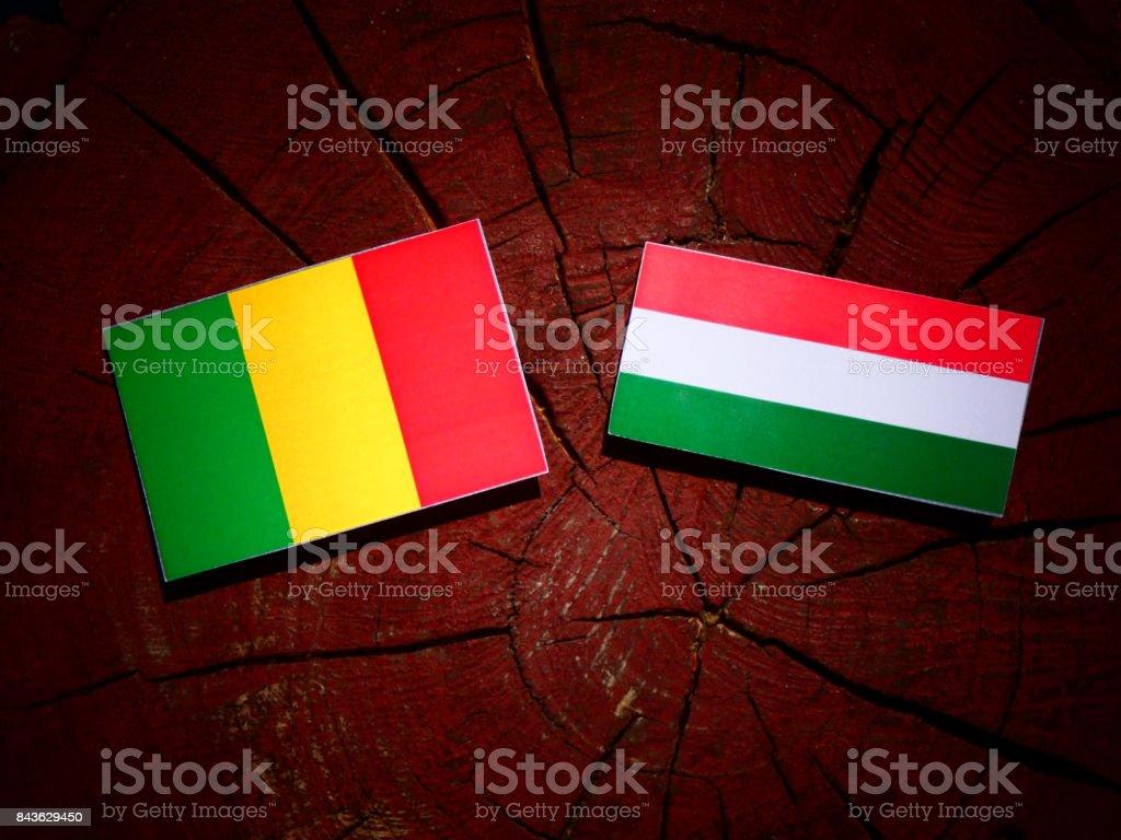 Bandeira do Mali com bandeira húngara no tronco de uma árvore isolada - foto de acervo