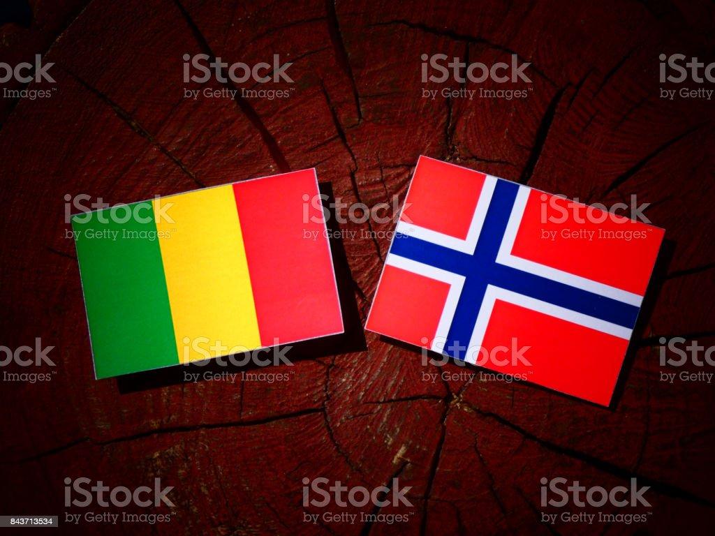 Bandeira do Mali com bandeira norueguesa no tronco de uma árvore isolada - foto de acervo