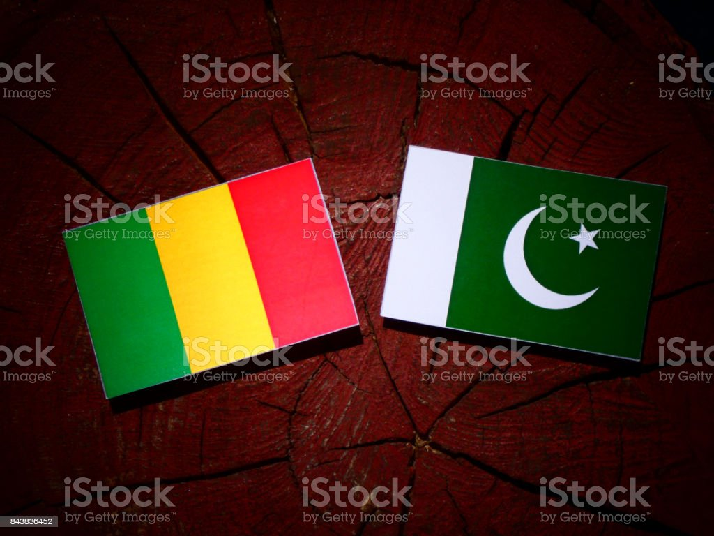 Bandeira do Mali com a bandeira do Paquistão em um toco de árvore isolada - foto de acervo