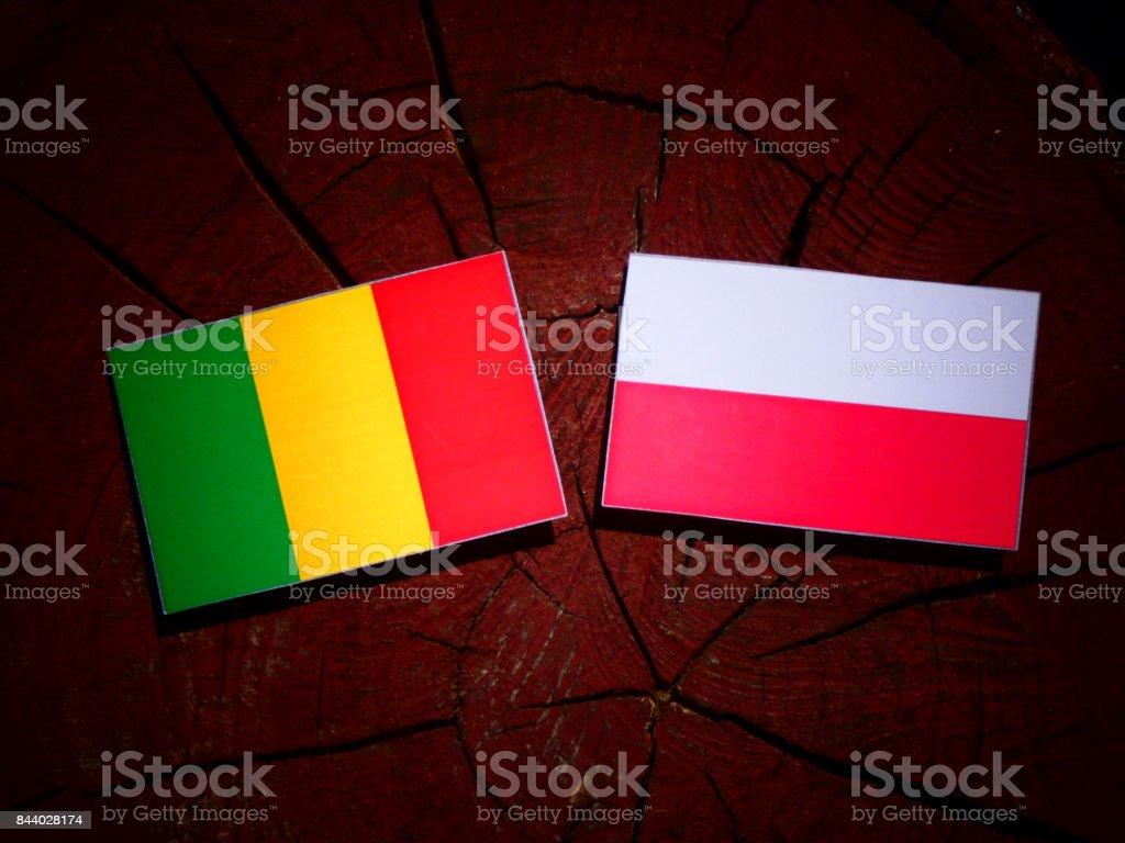 Bandeira do Mali com bandeira polonesa no tronco de uma árvore isolada - foto de acervo
