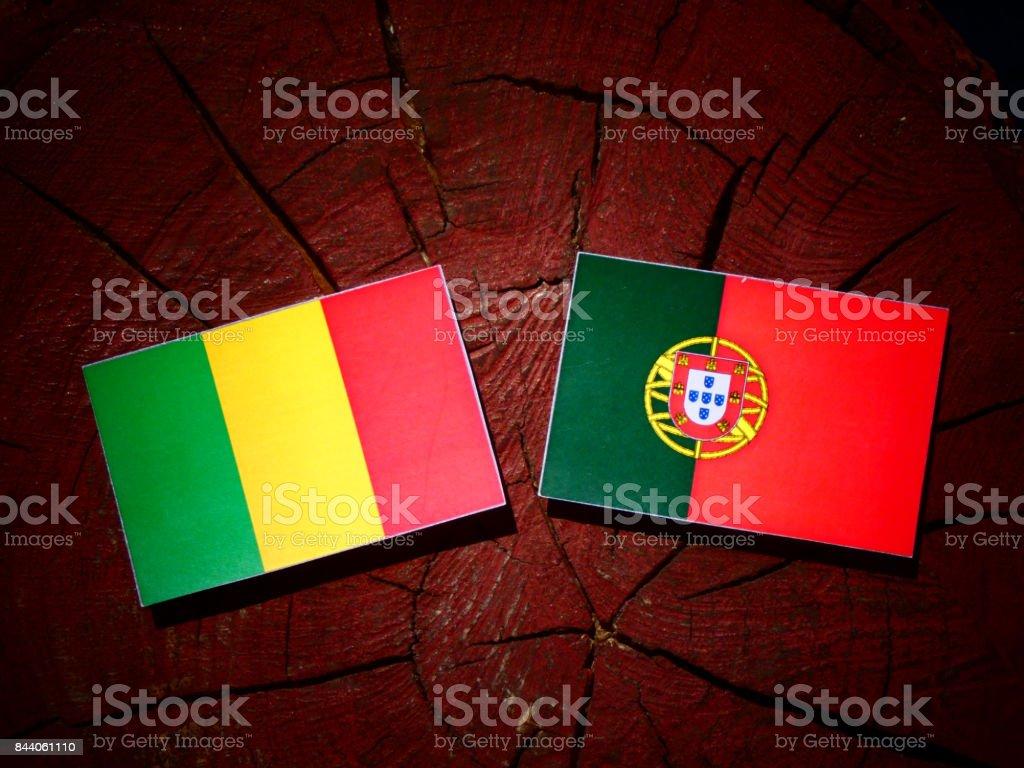 Bandeira do Mali com a bandeira portuguesa no tronco de uma árvore isolada - foto de acervo