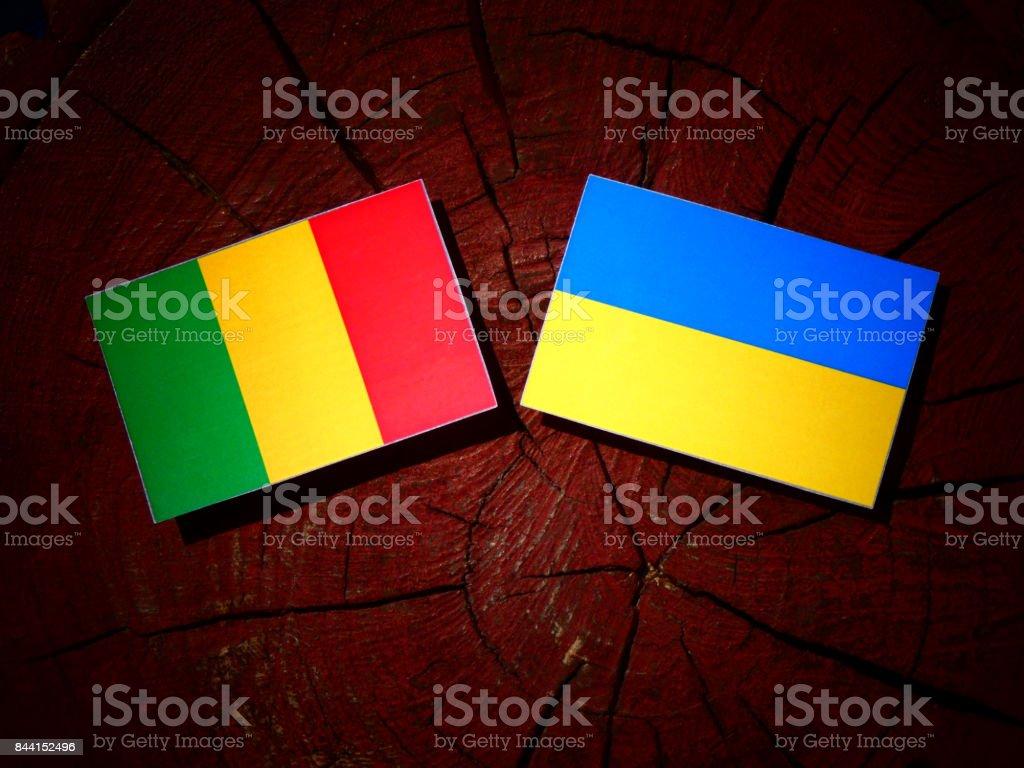Bandeira do Mali com ucraniano bandeira em um toco de árvore isolado - foto de acervo