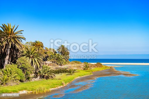 Landscape photo of Malibu Lagoon State Beach with palm trees and the Pacific Ocean in California, USA on a clear blue sky day.