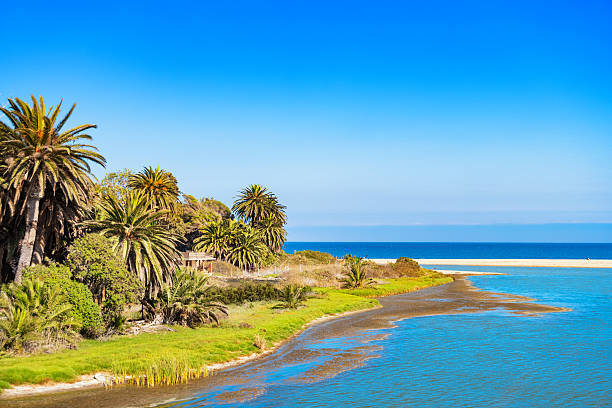 malibu lagoon state beach in california usa - laguna - fotografias e filmes do acervo