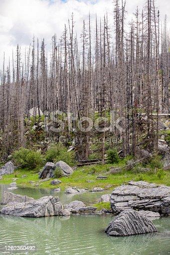 istock Maligne Lake - Jasper National Park 1262360492