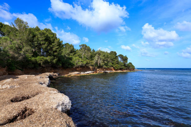 Mallorca, Spain. stock photo