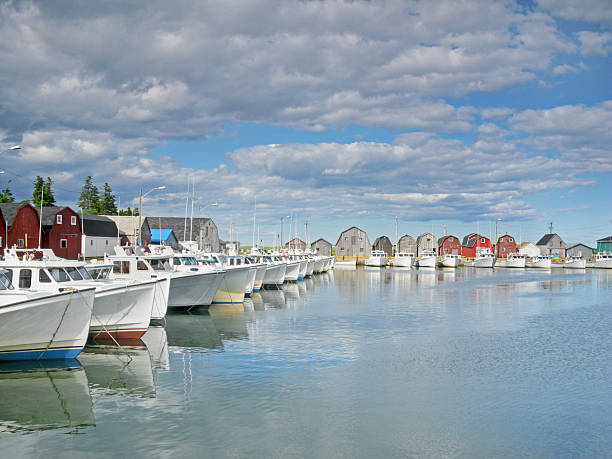 malpeque harbour, prince edward island, canada - prince edward island stock photos and pictures