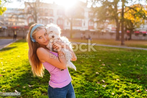 istock Maltese Puppy and Her Owner 1056050454