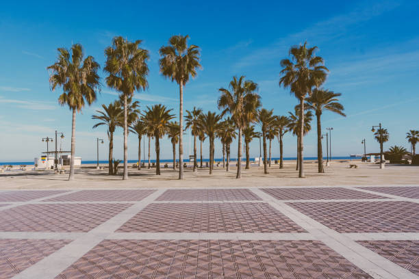 Malvarrosa beach in Valencia,Spain stock photo
