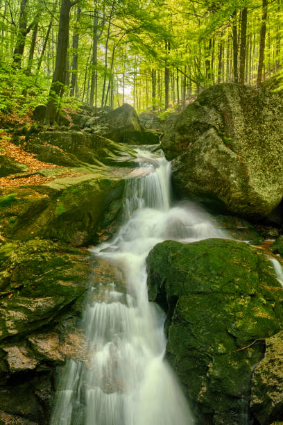 Maly Falls in super green forest surroundings, Czech Republic stock photo