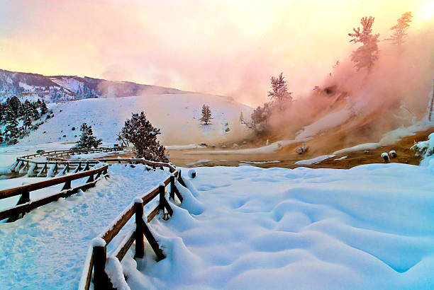 mammoth hot spring terraces - montana western usa stock pictures, royalty-free photos & images