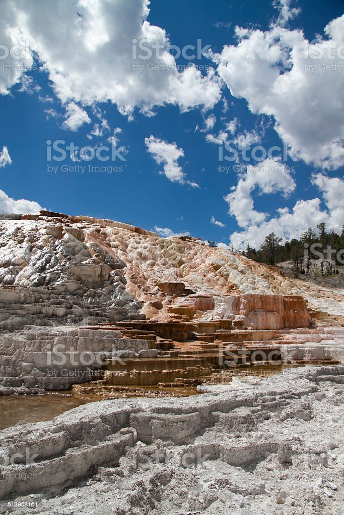 Mammoth Hot Springs of Yellowstone stock photo