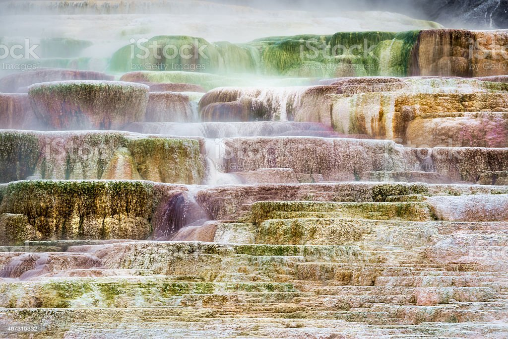 Mammoth Hot Springs stock photo