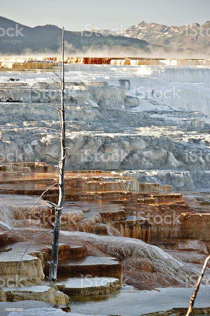 Mammoth Hot Springs terrazas - foto de stock