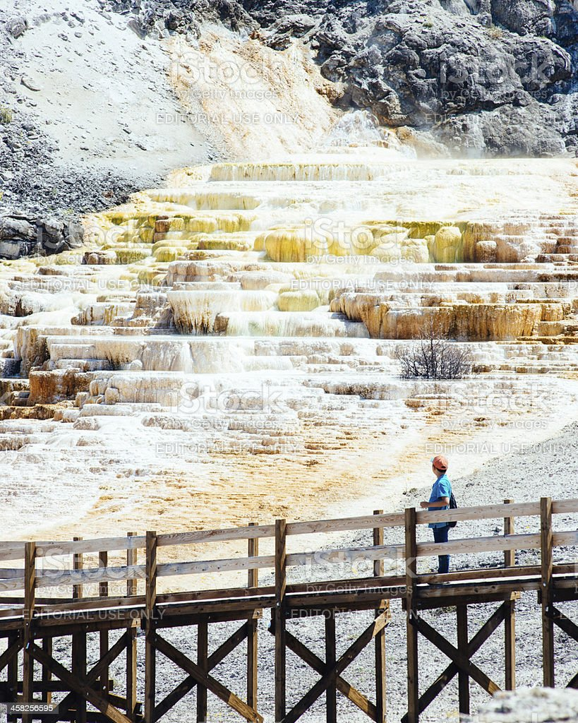 Mammoth Hot Springs Yellowstone stock photo