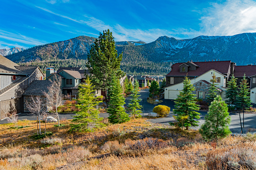 Pine trees line a street in a village area of homes in Mammoth Lakes in Autumn. Snow covered mountains jut up from the valley floor in the background.