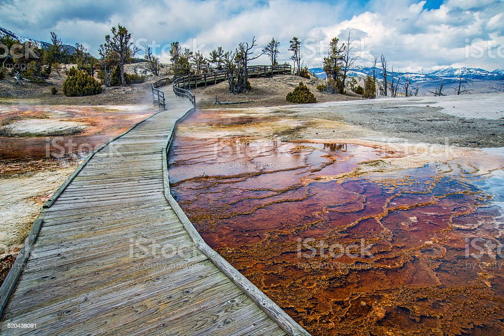 Mammoth Springs Boardwalk stock photo