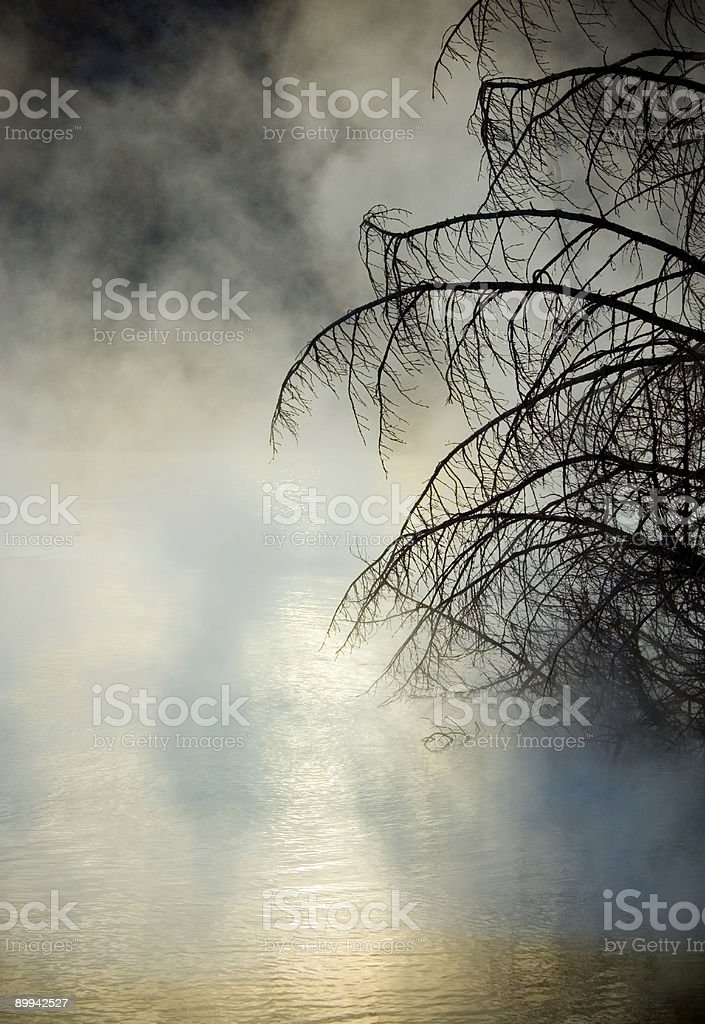 Mammoth Springs Sunrise Mist royalty-free stock photo