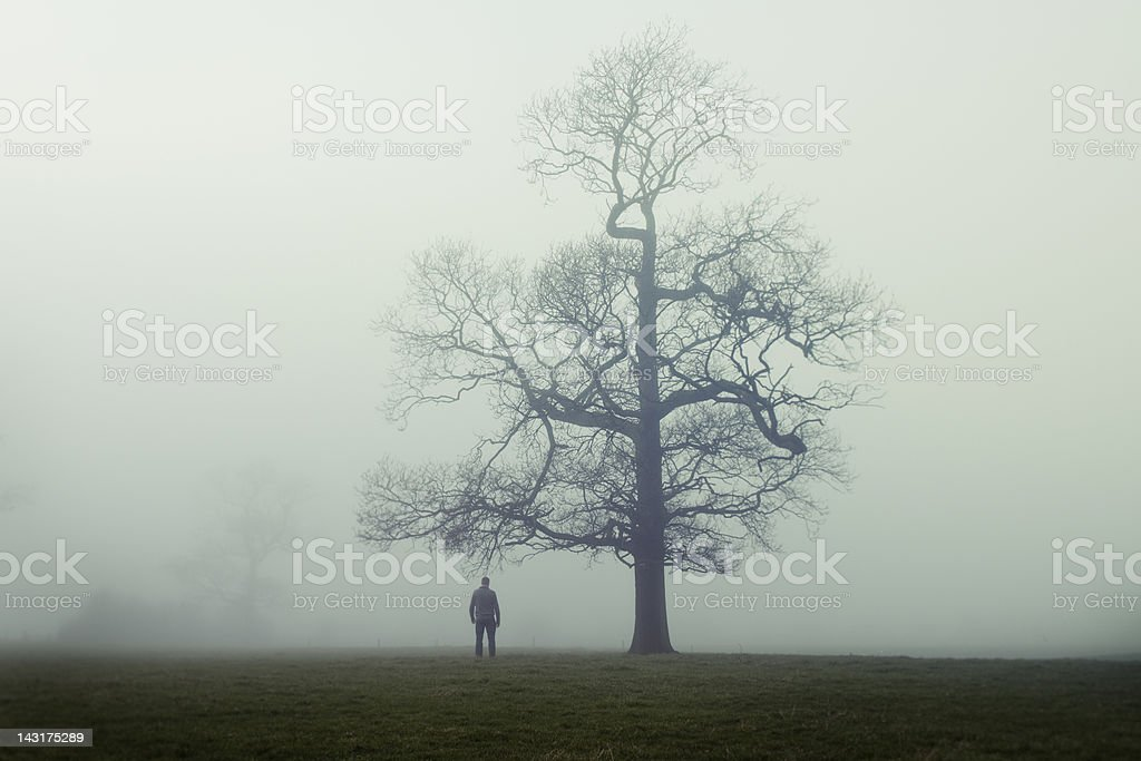 Man alone royalty-free stock photo