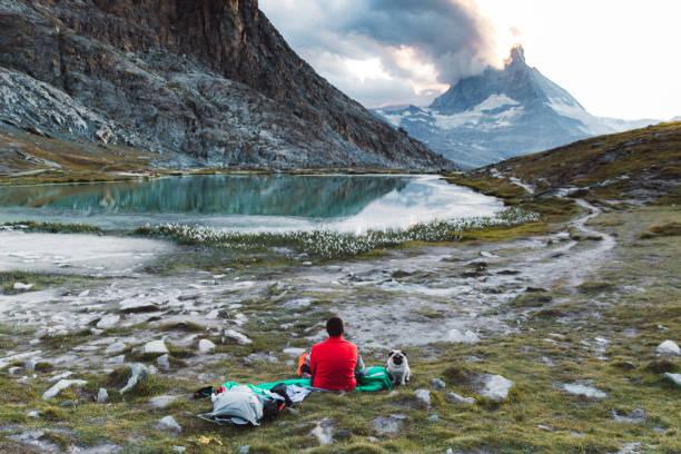 matterhorn manzaralı güzel dağ gölü yakınında dinlenen adam ve bir köpek - omurgalı stok fotoğraflar ve resimler