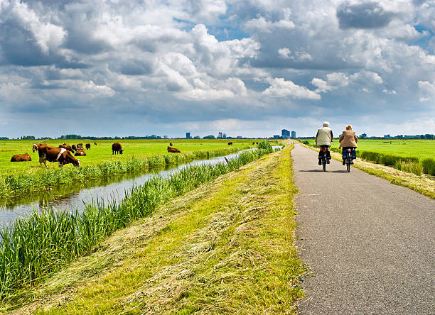 a man and a woman cycling on a road with green surroundings - netherlands stockfoto's en -beelden