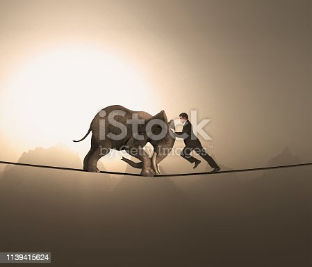 Man and an elephant pushing eachother and balacing on a rope at high altitude.