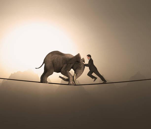 der mensch und ein elefant schieben sich gegenseitig und balsten auf einem seil in großer höhe. - niederlage stock-fotos und bilder