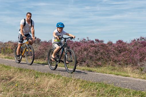 Man and boy at mountain bikes cycling through Dutch heathland