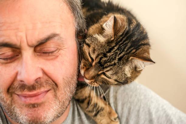 Man and cat love picture id1081674386?b=1&k=6&m=1081674386&s=612x612&w=0&h=1sycpp4mnmlpje yarg1vi9 8ozdeu jmmeaml3eemi=