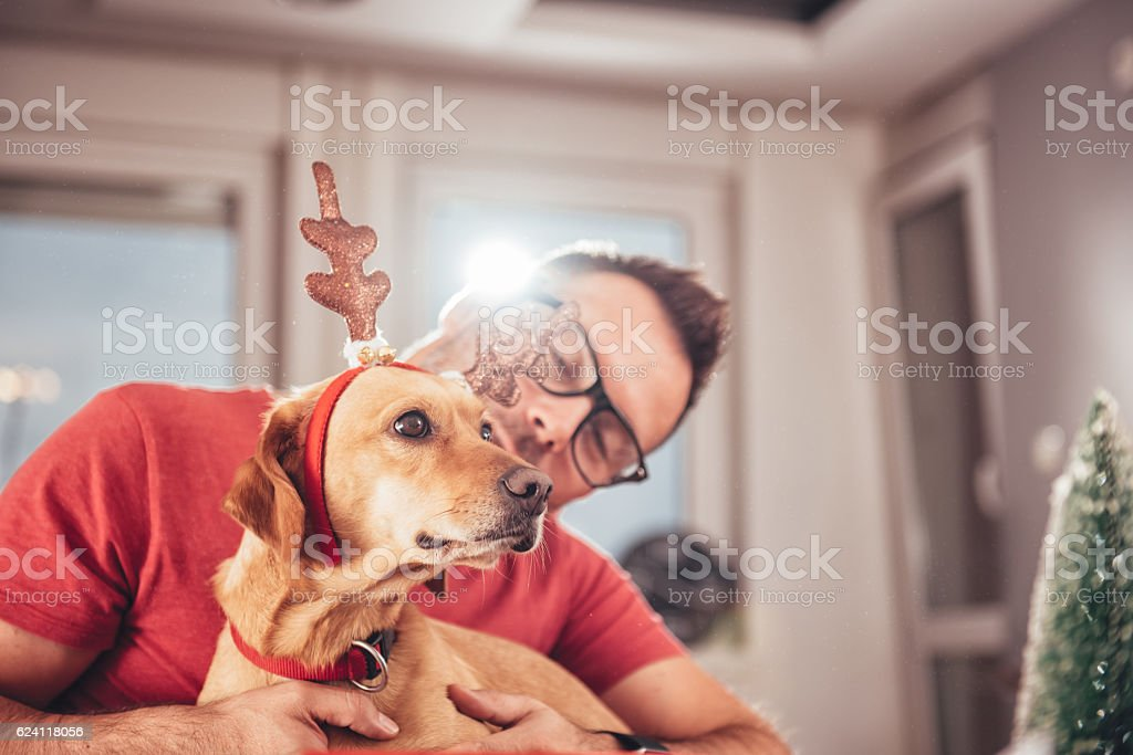 Man and dog at home stock photo