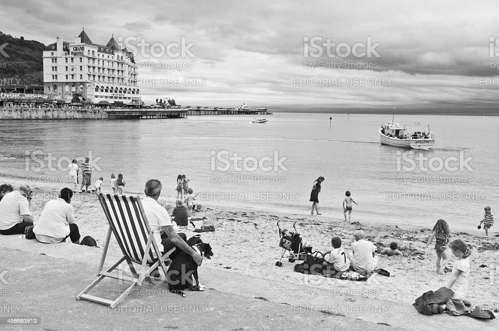 Man and dog beach deckchair families playing seaside royalty-free stock photo