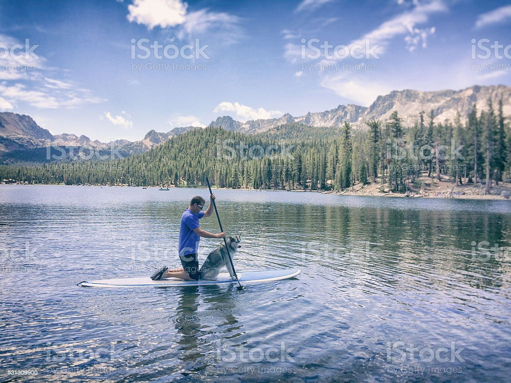 Man and dog paddle on a lake in Mammoth, California stock photo