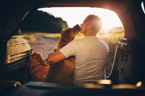 hombre y perro - dog fotografías e imágenes de stock