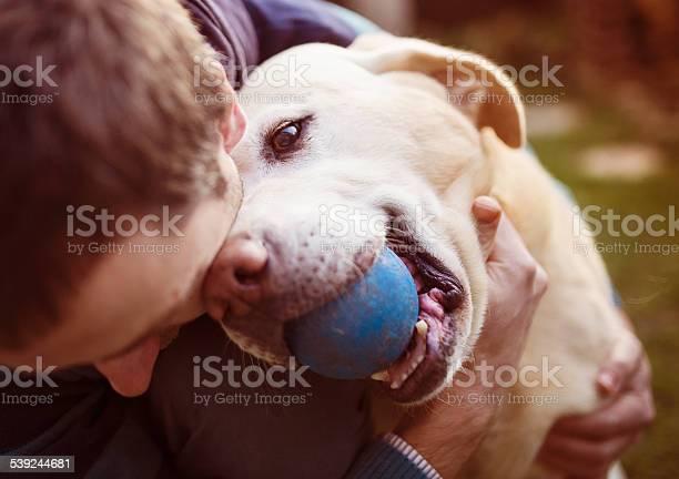 Man and dog picture id539244681?b=1&k=6&m=539244681&s=612x612&h=juu8w2vswrml3vfvjwr5og84gd1hwve8xb5xfevc93i=