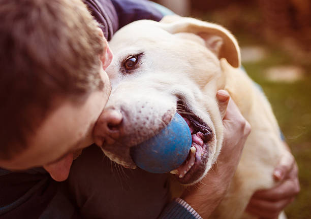 man and dog - dog and owner stock photos and pictures