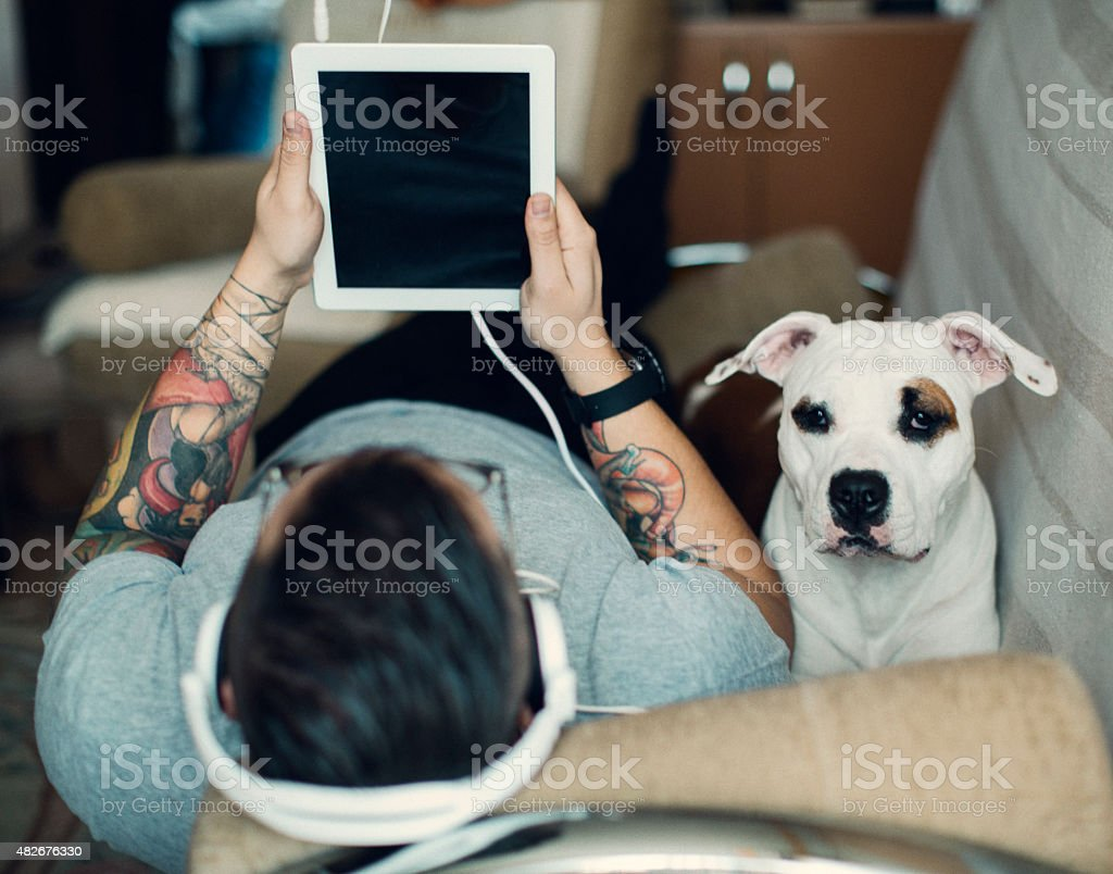 Man and dog using tablet. stock photo