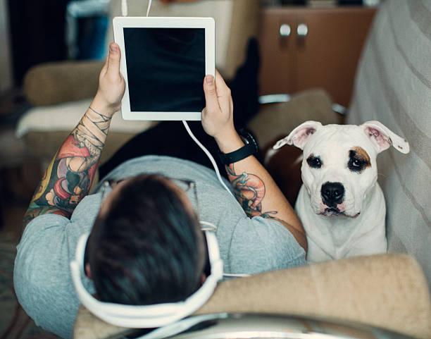mensch und hund mit tablet. - hundeplätze stock-fotos und bilder