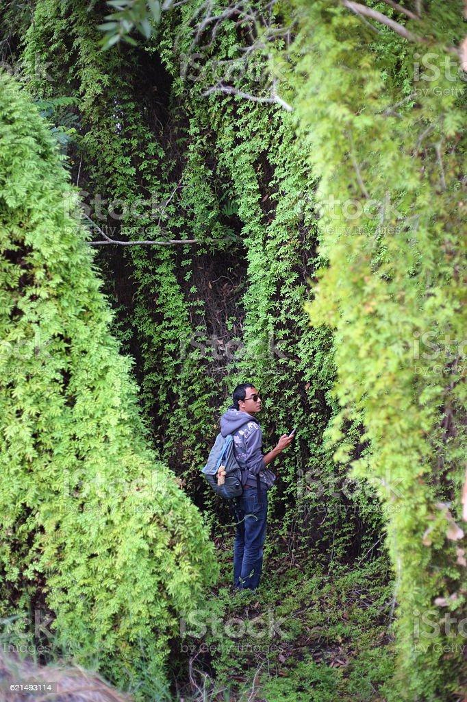 Man and Green Wetland Forest Lizenzfreies stock-foto