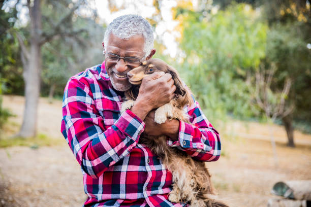 man and his best friend - happy pets stock photos and pictures