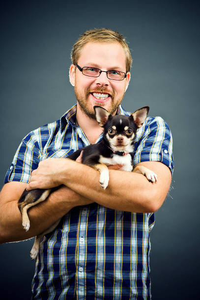 Man and his Chihuahua Jonas and his chihuahua Sara short haired chihuahua stock pictures, royalty-free photos & images