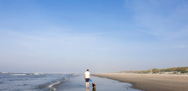 A man and his Corgi dog walking along the beach stock photo