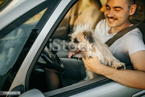 937331052 istock photo A man and his dog enjoying the trip 1256330076