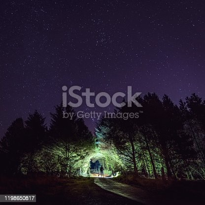 a man and his dog in silhouette standing in forest at night shining a torch in an opening in a forest under a starry sky, with a visible trail in forground