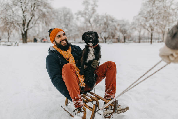 Man and his dog in snow stock photo