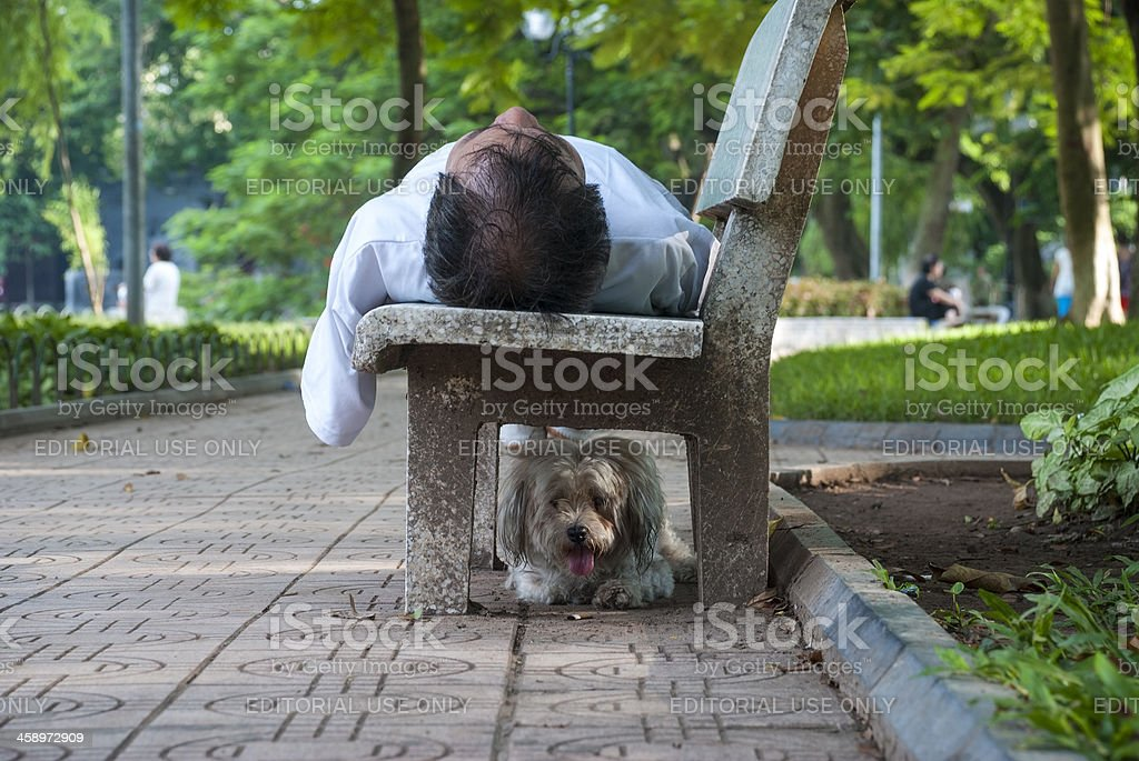 Man and his dog in the park royalty-free stock photo