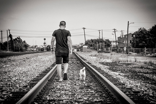 Man and His Dog Walking on the Tracks