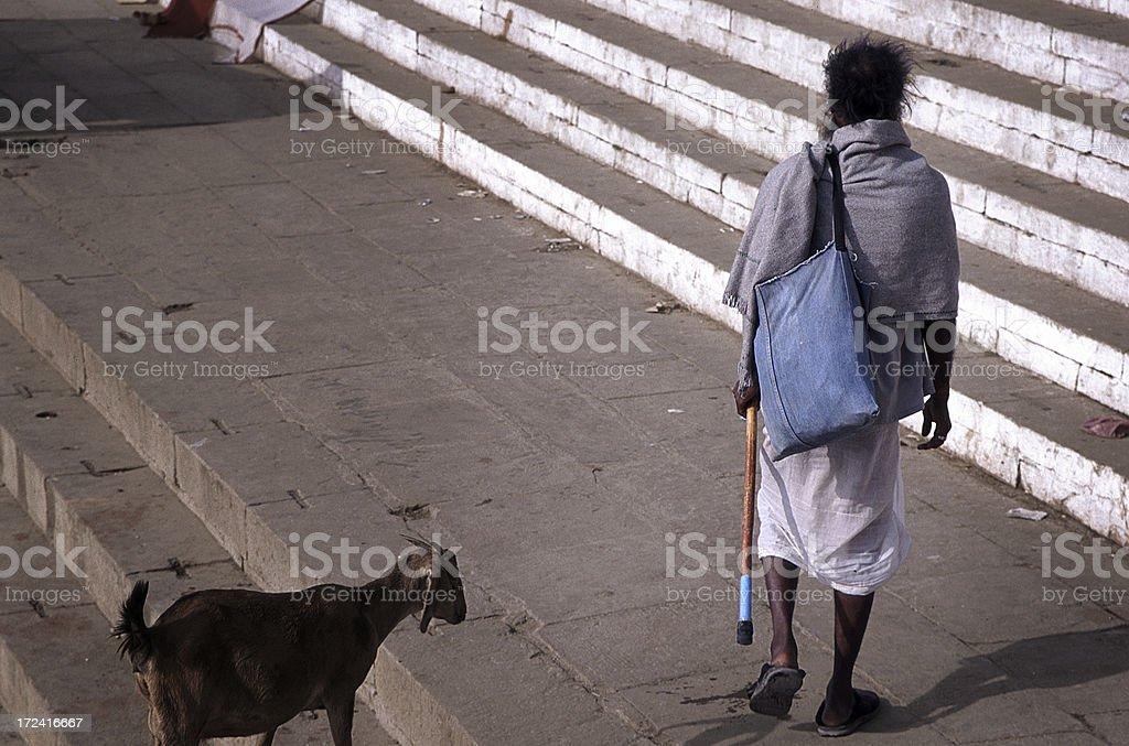 Man and his goat. Varanasi, India royalty-free stock photo