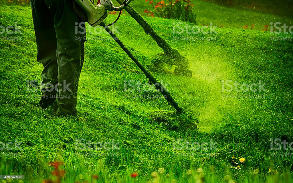 man and machine clearing weeds garden stock photo
