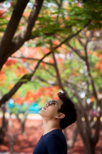 el hombre y la naturaleza. - gerardo huitrón fotografías e imágenes de stock
